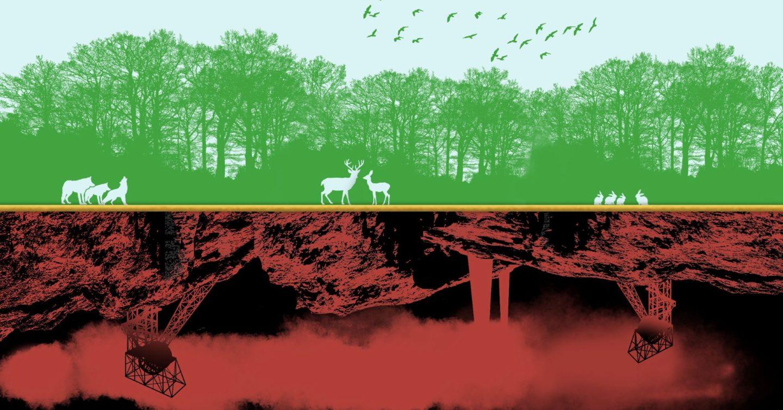 Ekologia integralna J.R.R. Tolkiena