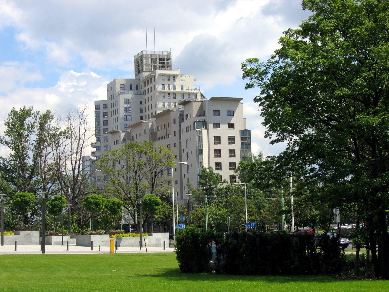 Milert: Rachityczne drzewko na placu nie wystarczy, potrzebujemy zielonej infrastruktury